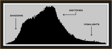 Histogram of Red Fox Image